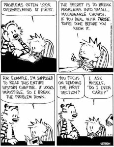 2013_01_11_Calvin_Hobbes_Project_Management